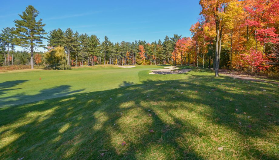 Mackenzie Investments Open course