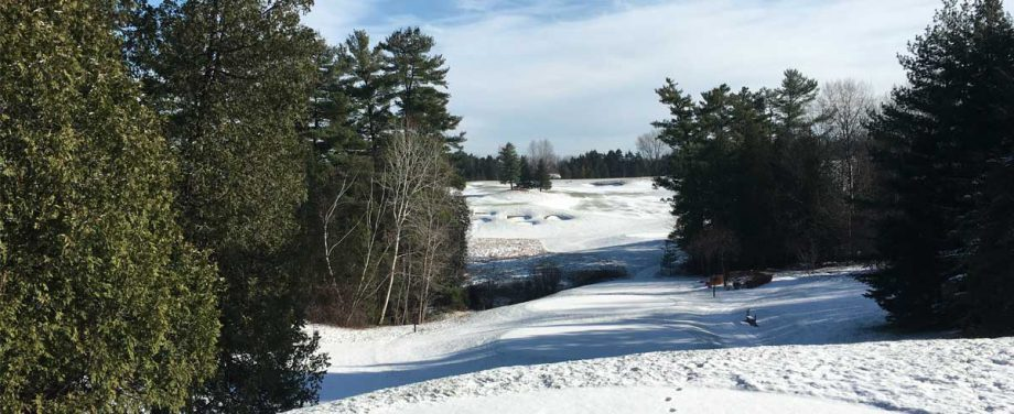 Camelot Golf & Country Club - Winter