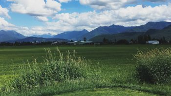 Chilliwack Golf Course